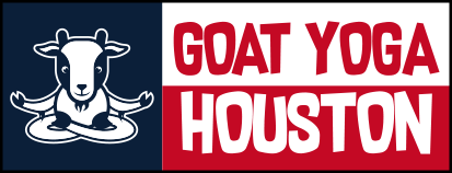 Goat Yoga Houston | Baby Goat Yoga in Houston Metro Area